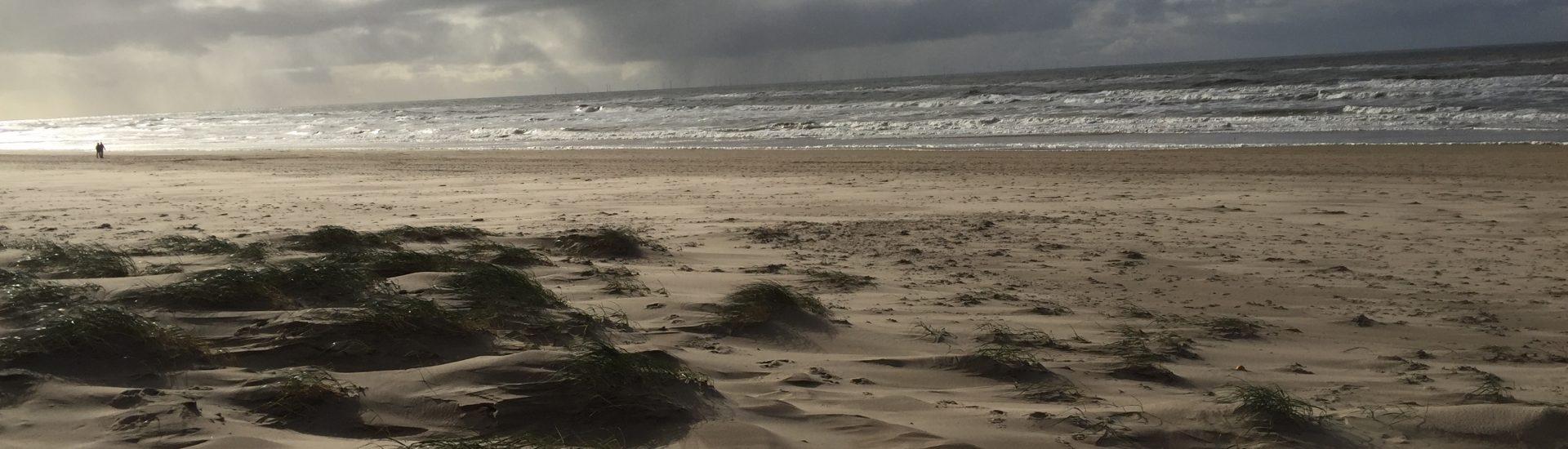 StrandDünen